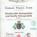 Grzegorz Suder - Osteopatia